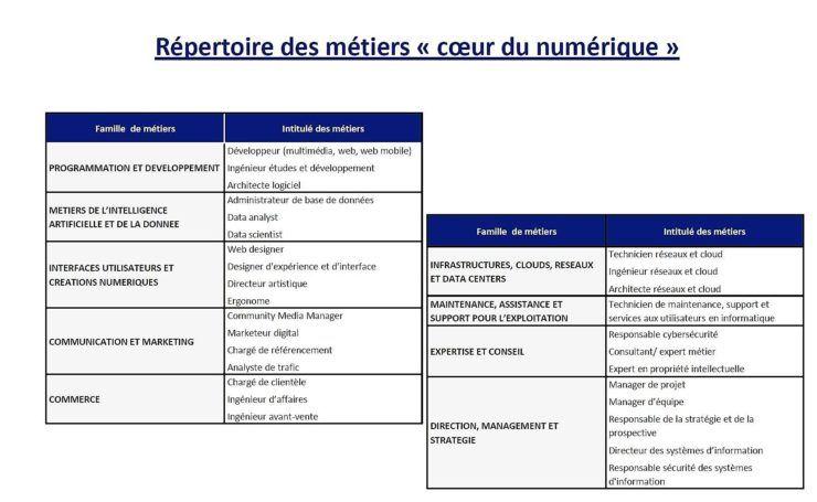 Répertoire des métiers au coeur du numérique_France Stratégie 2017